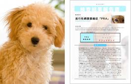 愛犬の遺伝子疾患検査